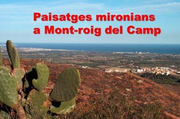 69 – TASTETS DE PATRIMONI: MONT-ROIG A TARRAGONA